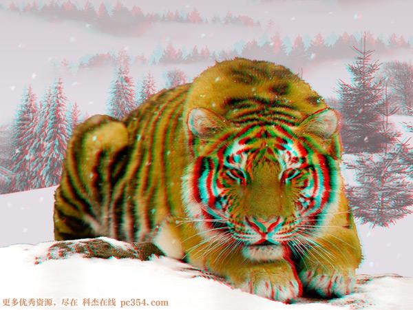 红蓝3d眼镜测试演示3d图片-动物植物篇